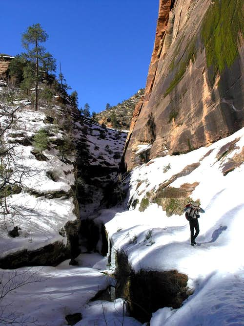 Zion in the Winter