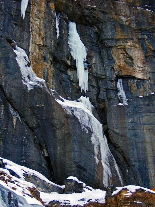 Mixed Line - Jasper National Park