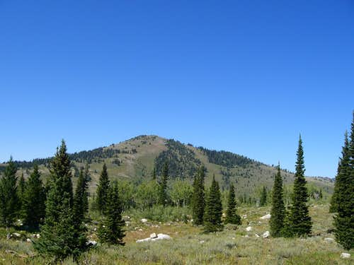 Bloomington Peak