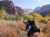 Kolob Arch trail from Lee\'s Pass