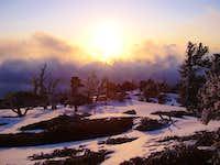 Sunset At Limber Pine Bench