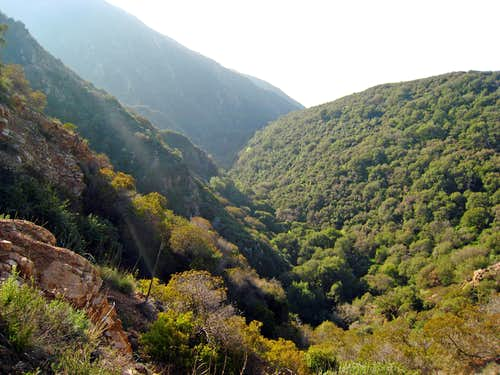 Rubio Canyon