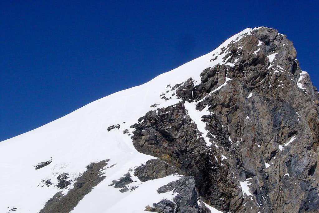The head of Gross Schärhorn 3295m
