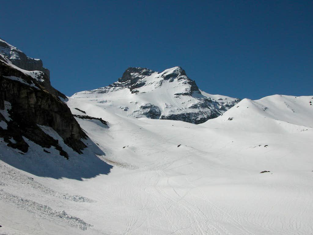 Gross Schärhorn 3295m