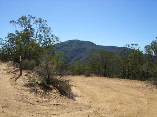 Prominent Junction at the Trailhead