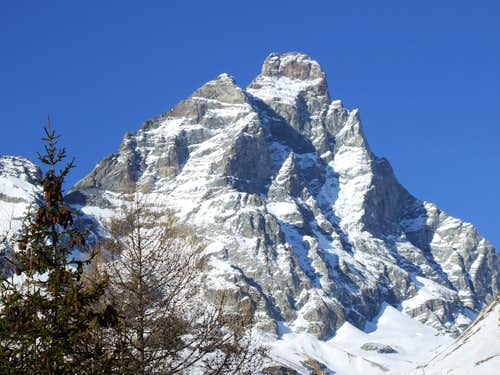 Pic Tyndall and Matterhorn