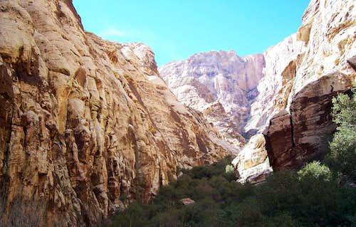 Fern Canyon Solo Shoot