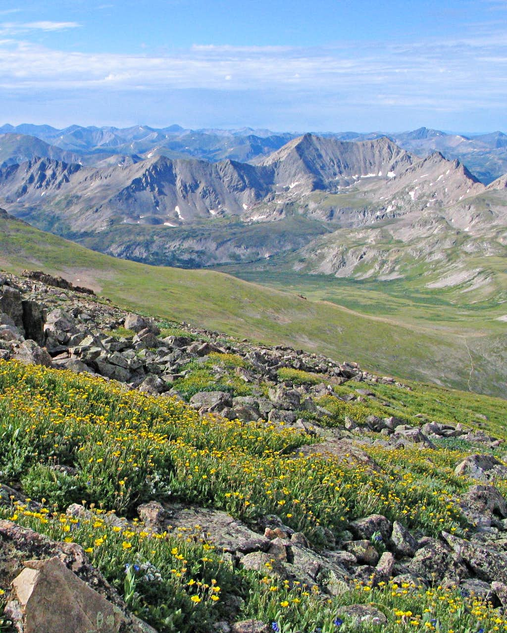 Wildflowers and Elkhead Pass