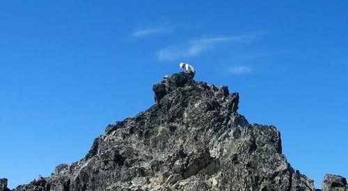 On top of Mt. Daniel 10-4-03