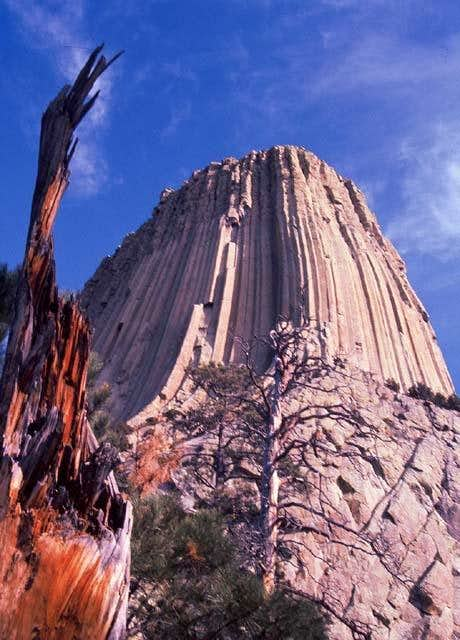 Devils Tower And Snag