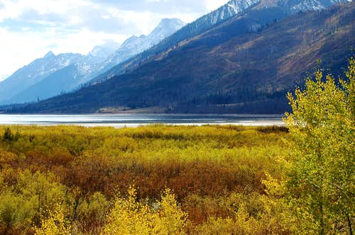 Fall at Jackson Lake