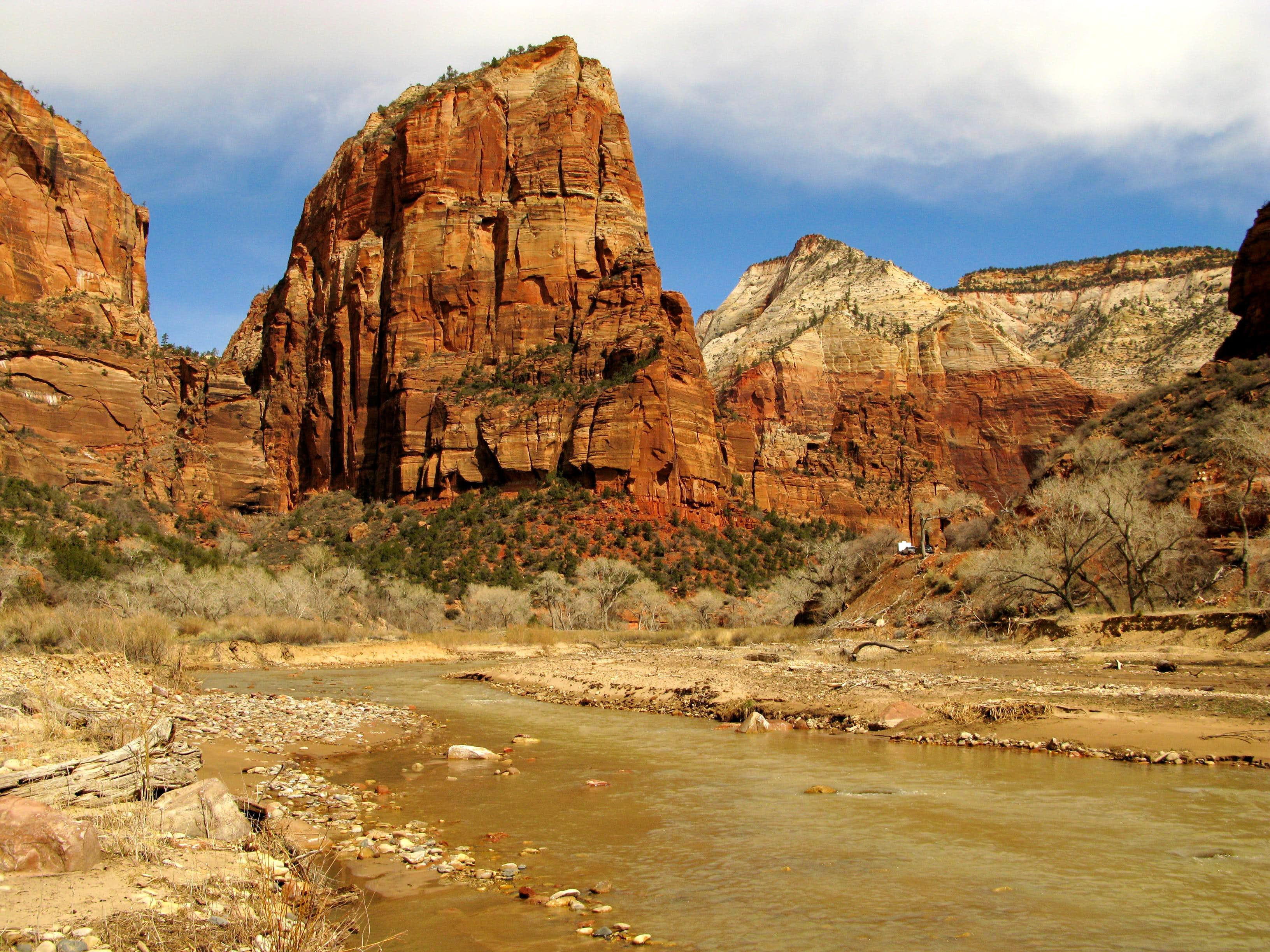 Zion National Park, March 2008