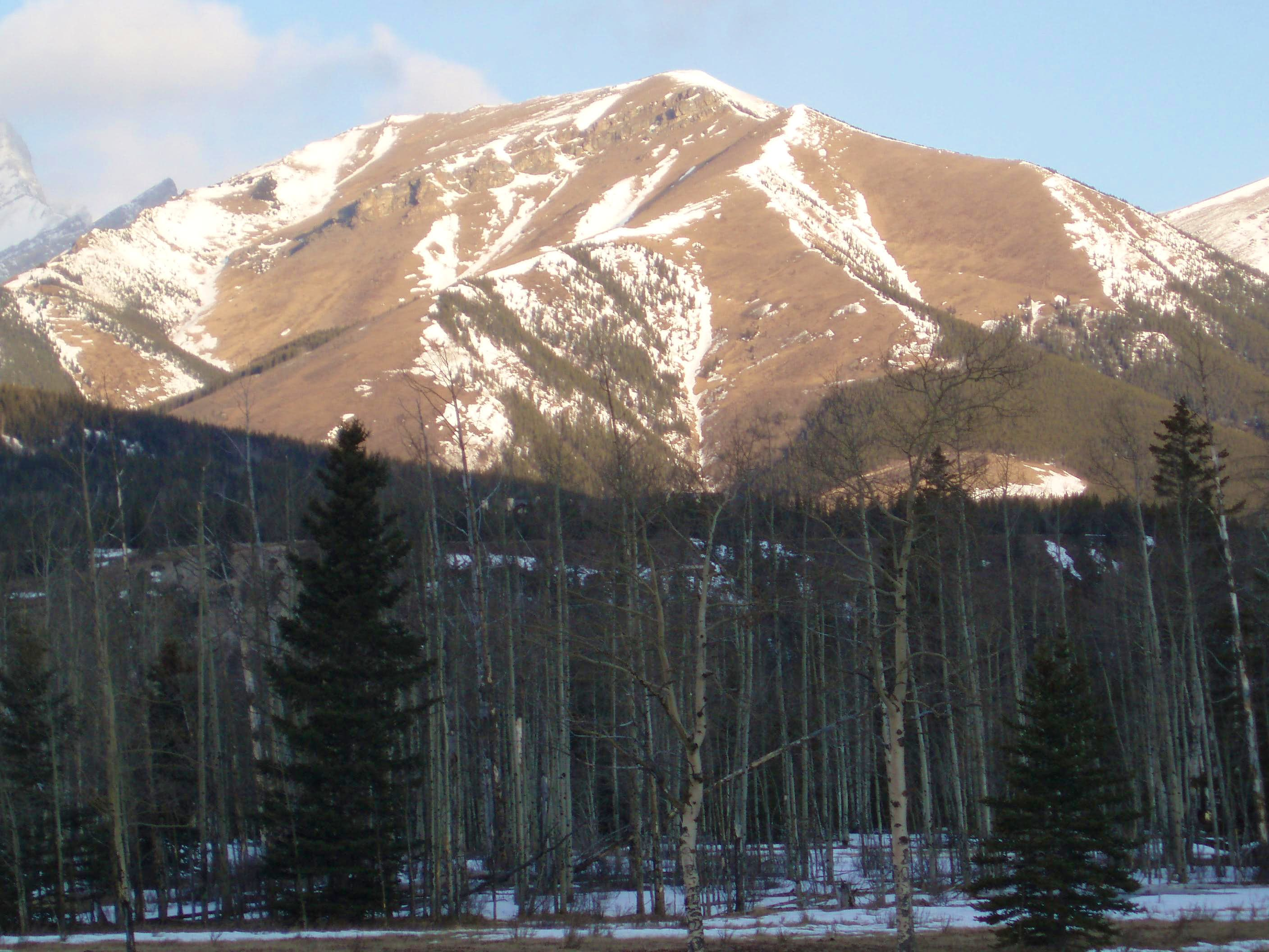 Olympic Summit