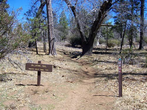 Monument Peak Trailhead