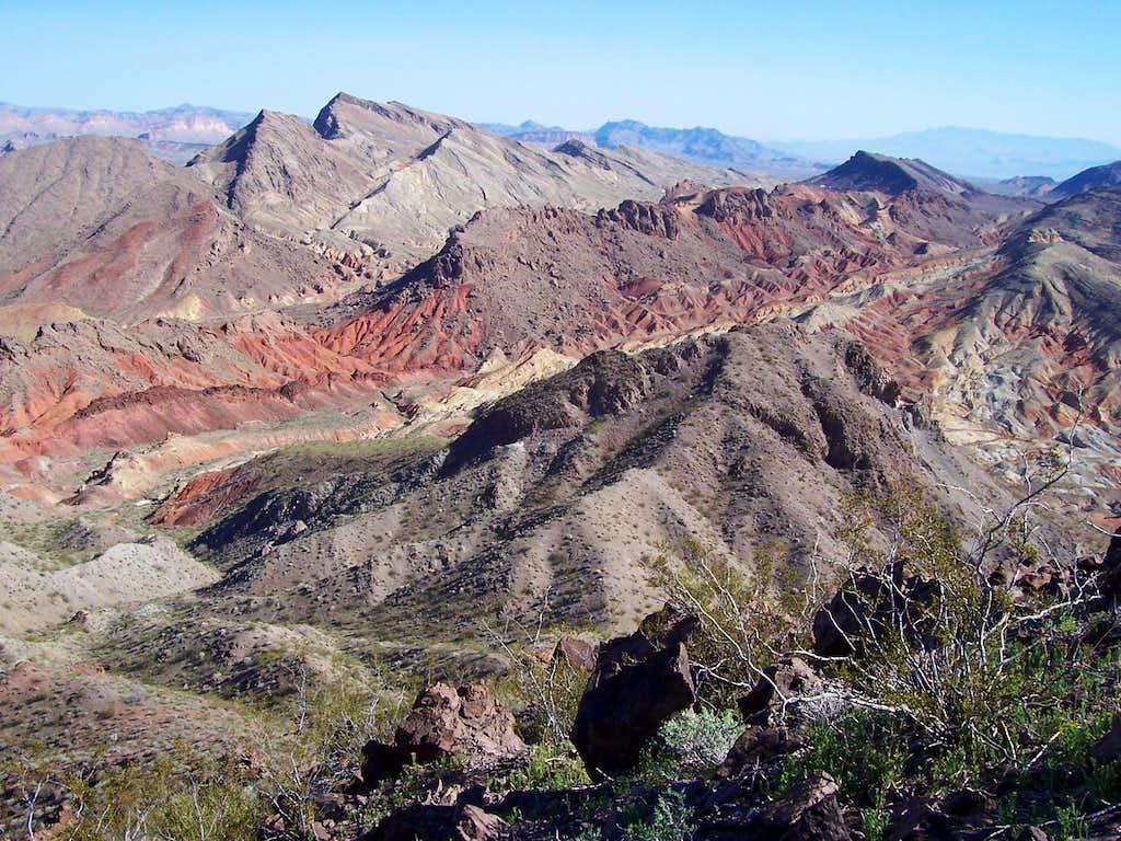 Desert Dreams 2<font color=blue>0</font><font color=brown>0</font>8