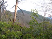 Laurel Knob (Snooks Nose)