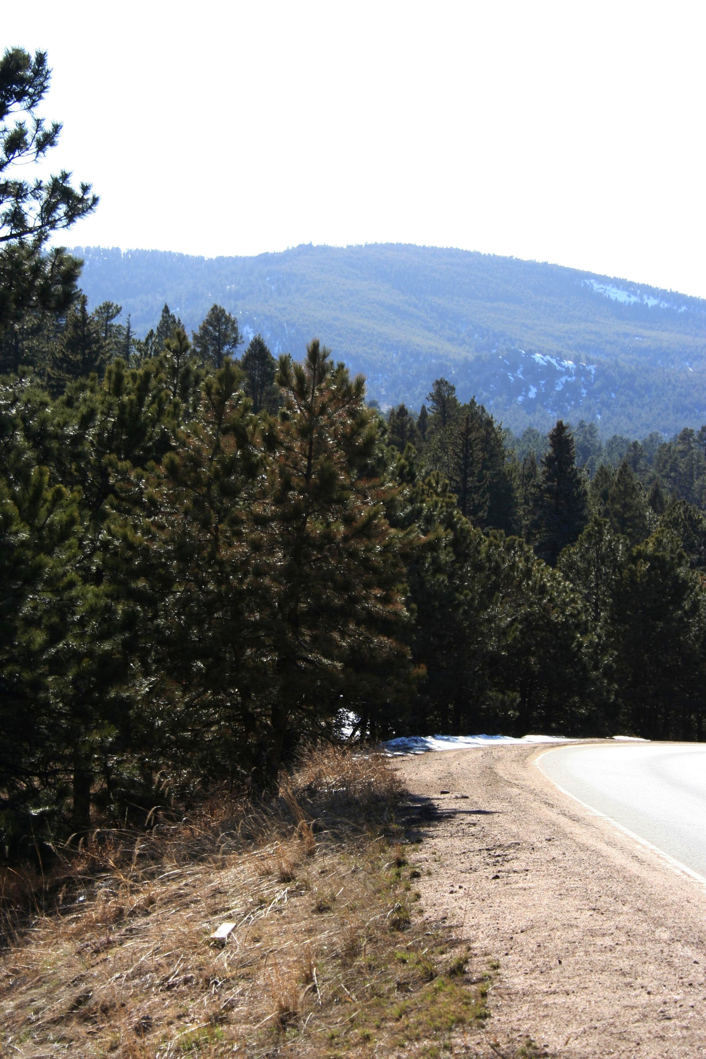 Evergreen Mountain