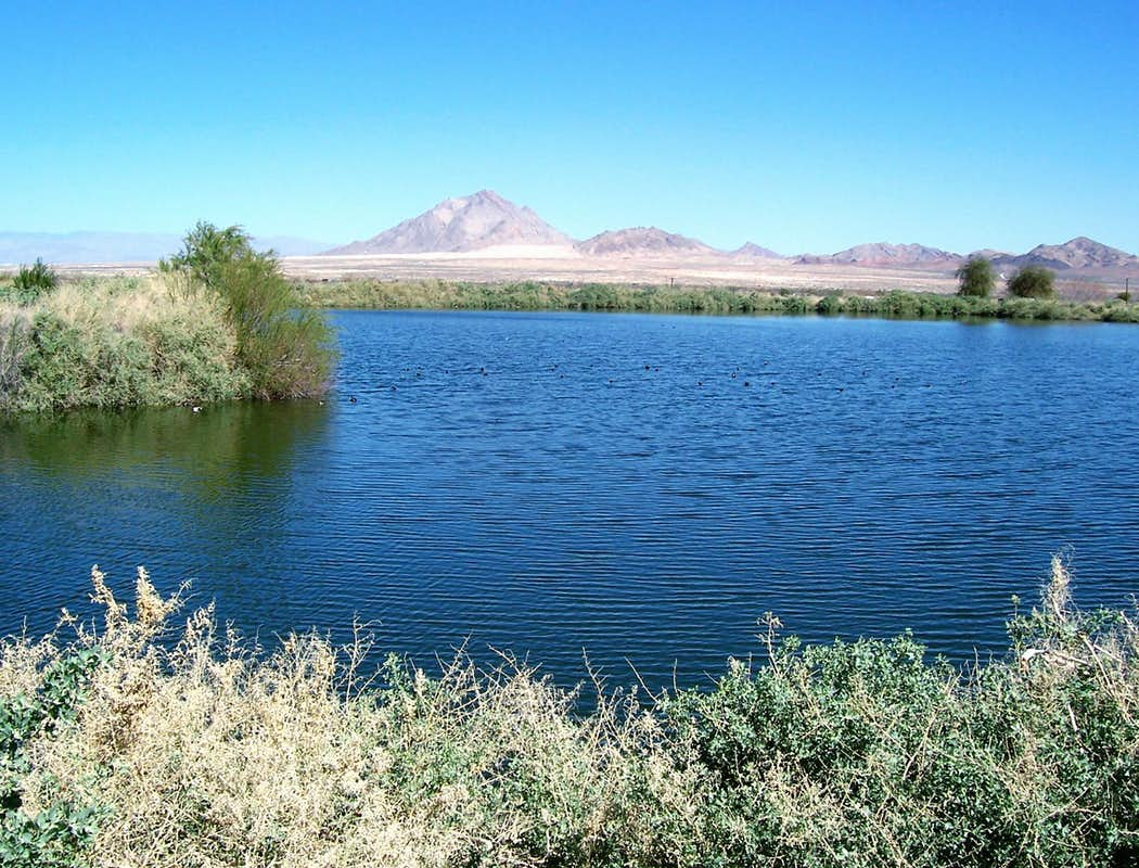 Frenchman mountain climbing hiking mountaineering for Duck pond water