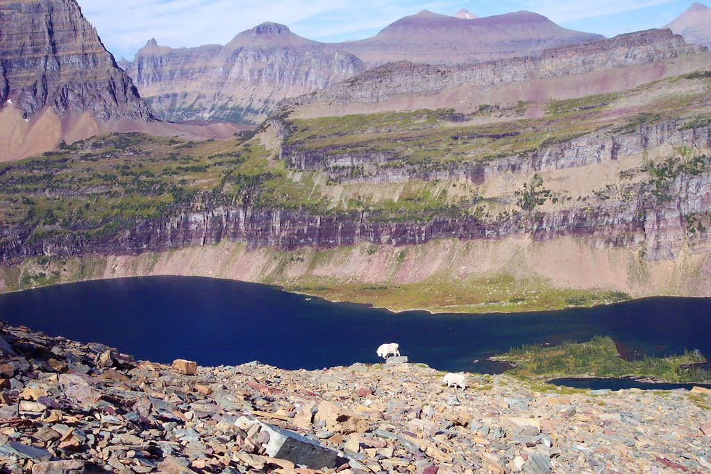 Hidden Lake Pass, Glacier National Park