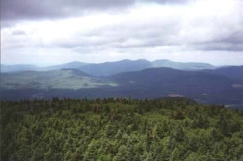 View from the firetower on...