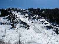 Avalanche Path in Slide Canyon