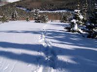 Trail blazing on Elbert