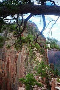 looking toward the ridge to...