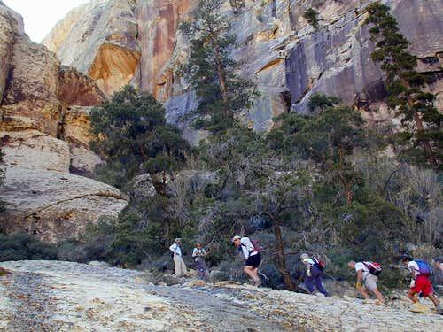 hiking up slab by brush