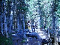 Trail to Glacier Basin
