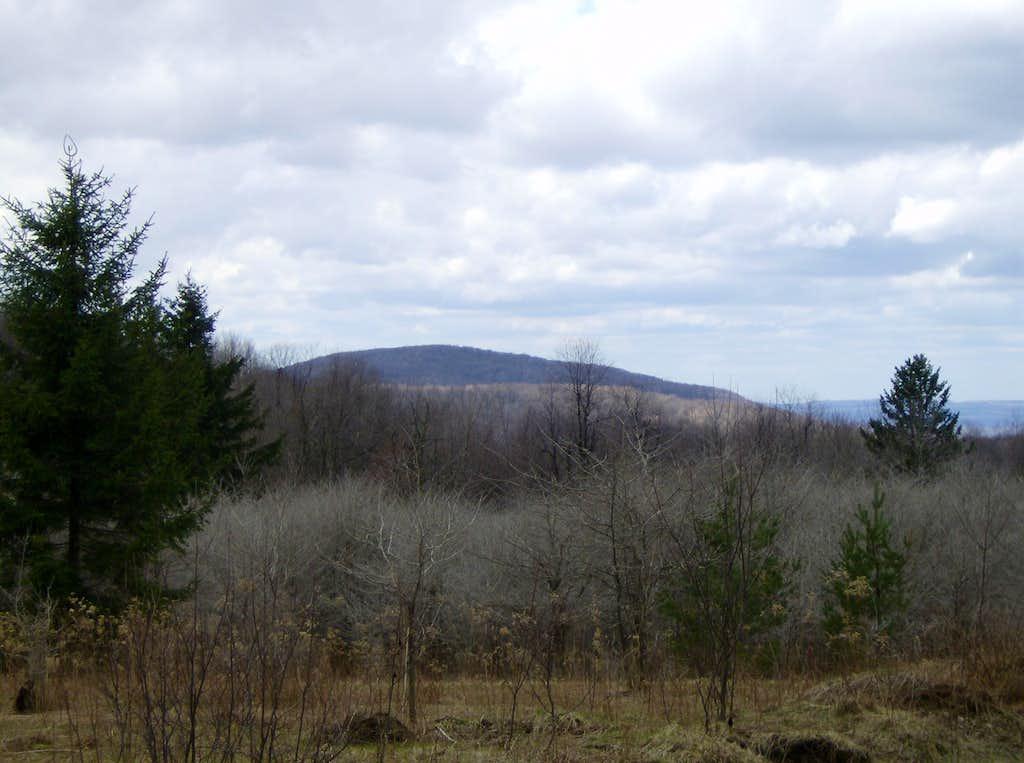 Birch Rock Hill