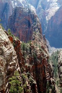Angels Landing and Walter's Wiggles