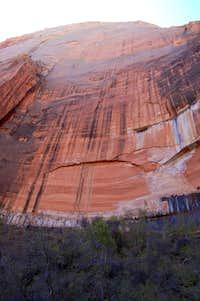 Red Rockface in Zion