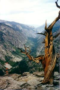 Bubbs creek canyon. Look west...