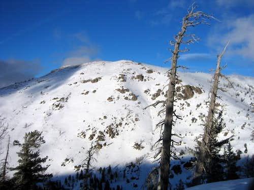 Mt. Reba! (01/25/2004)
