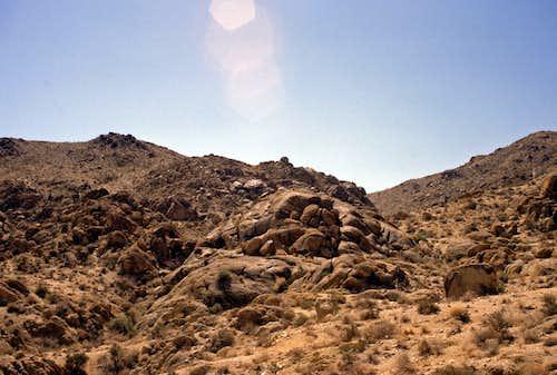 49 Palms Oasis Trail