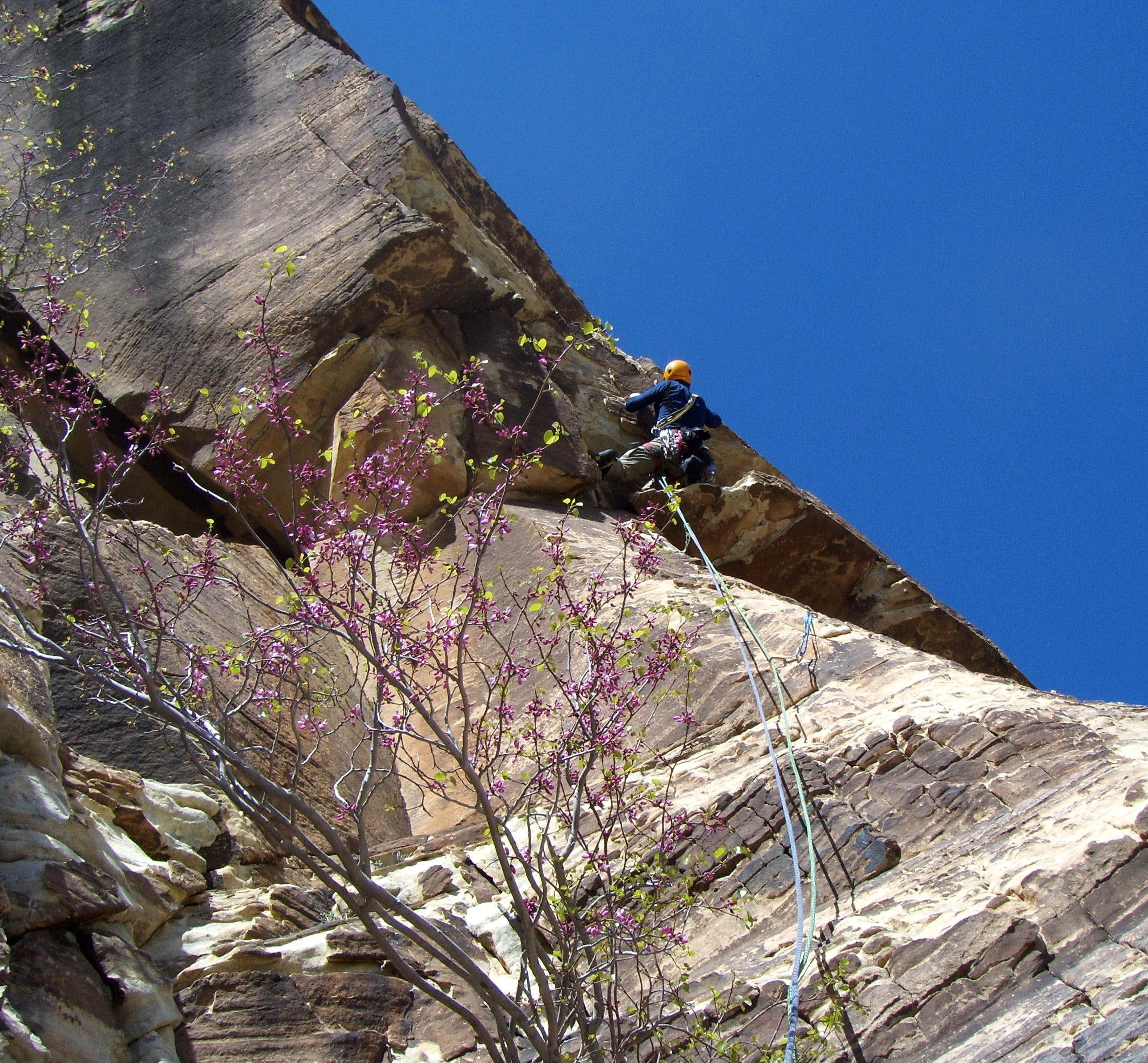 Sour Mash, 5.10a, 6 Pitches