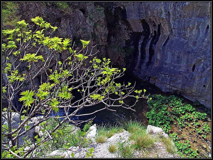 In the gorge of Val Rosandra / Glinscica