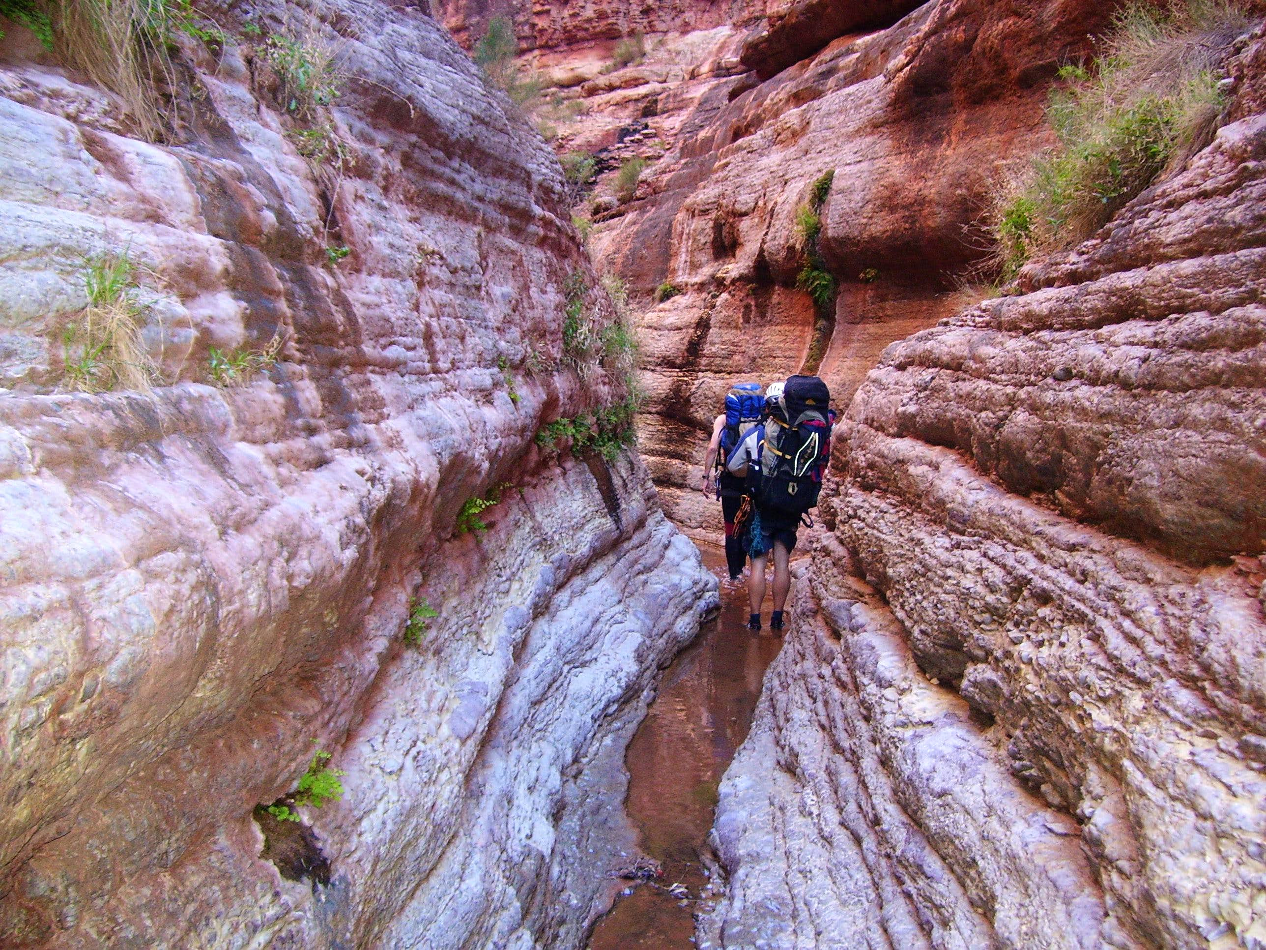 Adventures in Buckfarm Canyon/Eminence Break