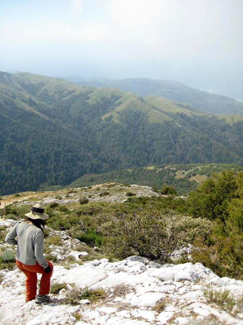 Pico Blanco South by Southwest
