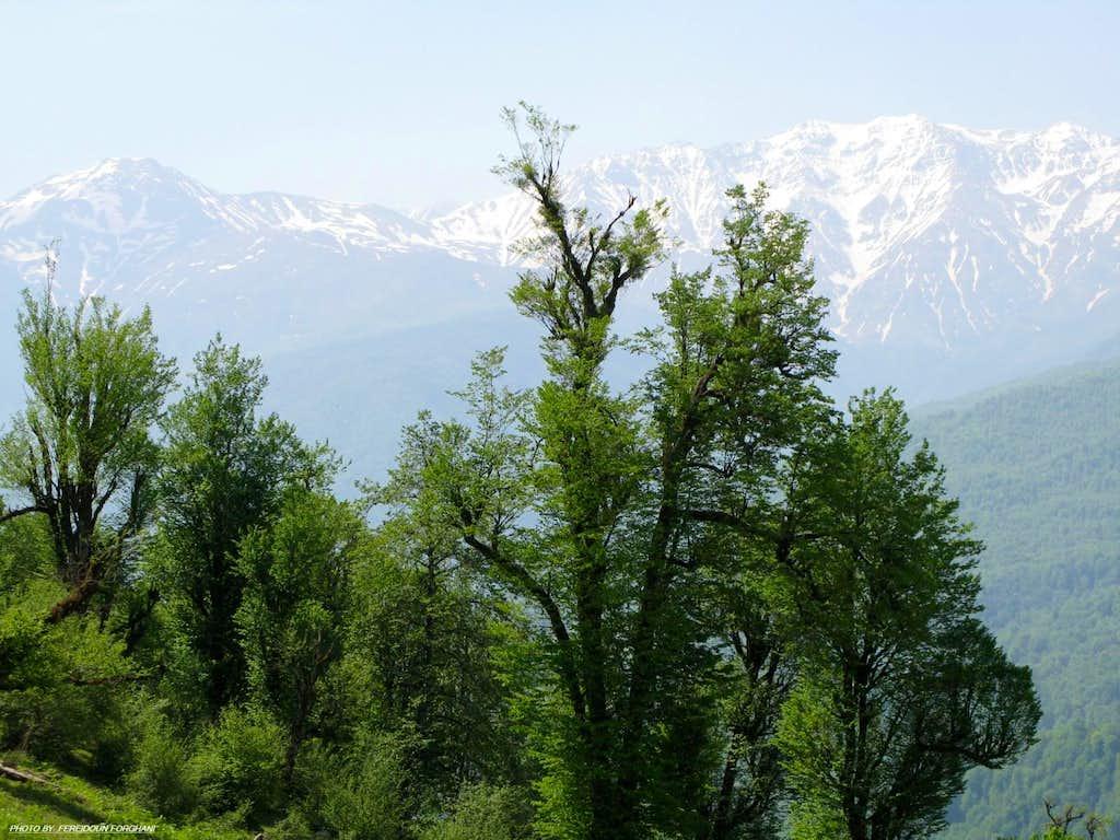Gowra views