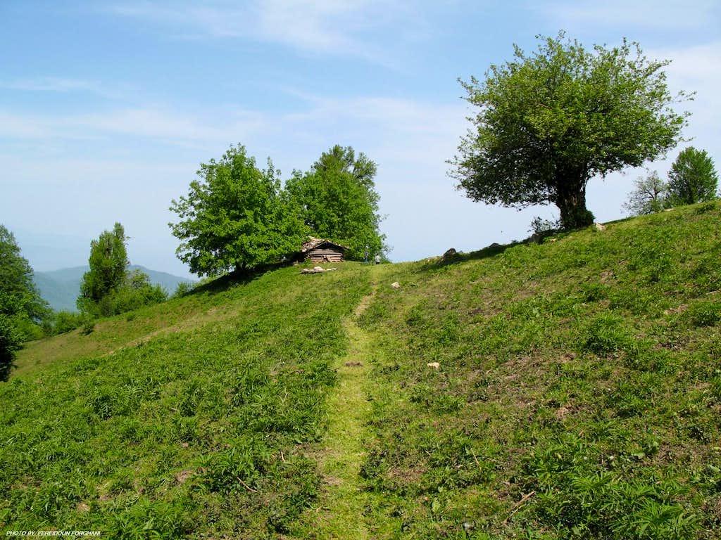 Gowra shepherd house