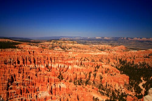 Endless rows of pinnicles, Bryce Canyon N.P.
