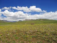 The Deosai Plateau, Northern Areas of Pakistan