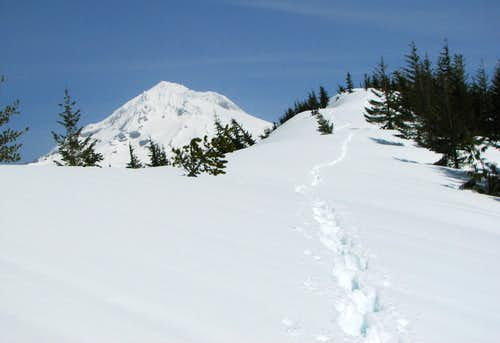 Spring snowshoe to East Zigzag