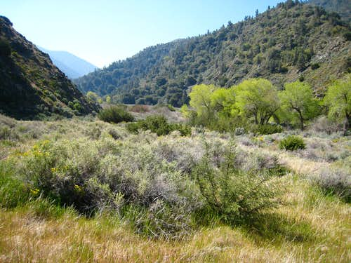 San Emigdio Creek Area