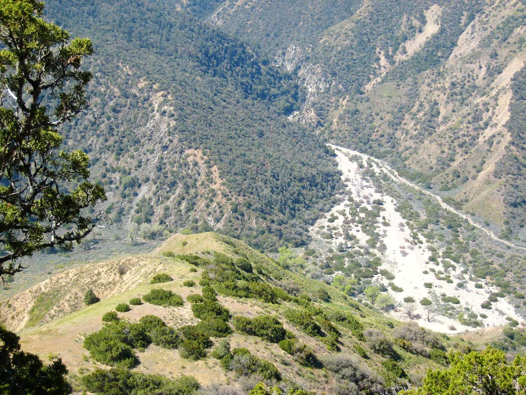 San Emigdio Creek Drainage