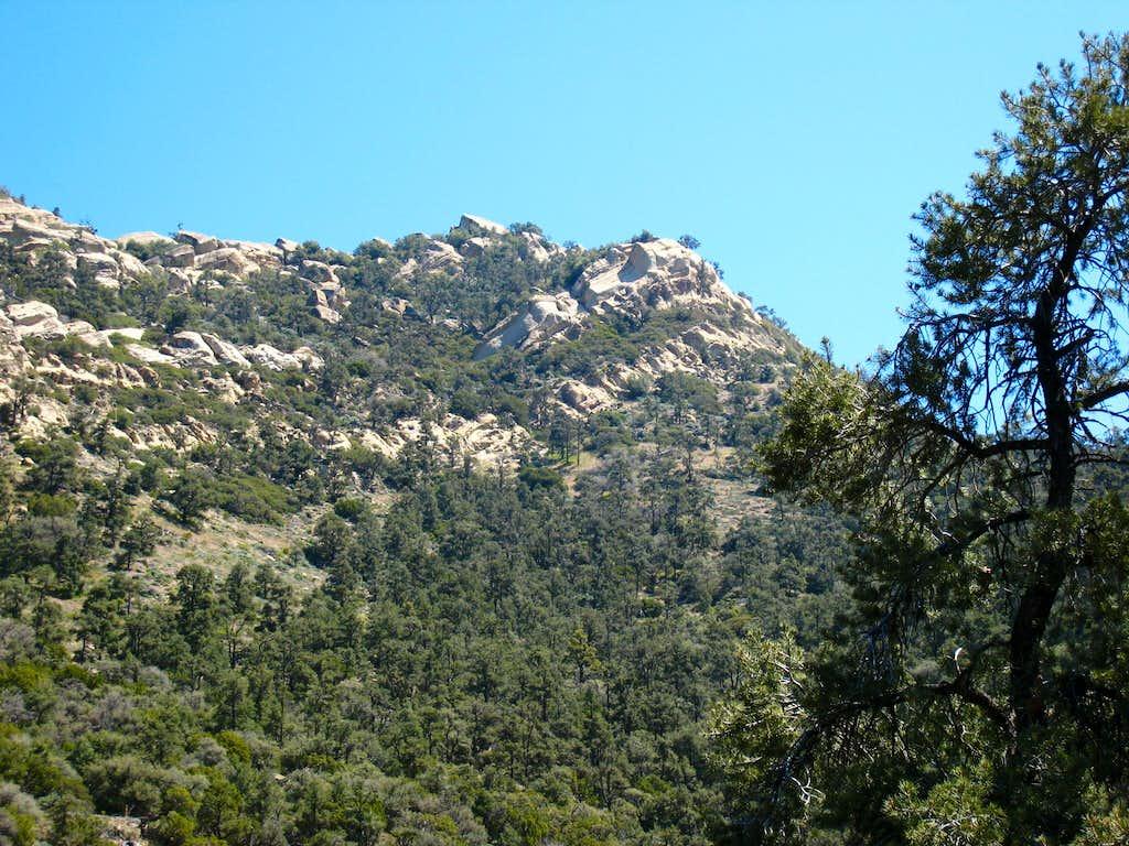 Eagle Rest Peak (6005')