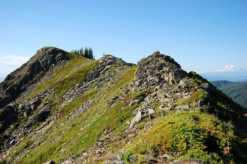 The summit of Tomlike Mt. with Mt. Adams in the background right