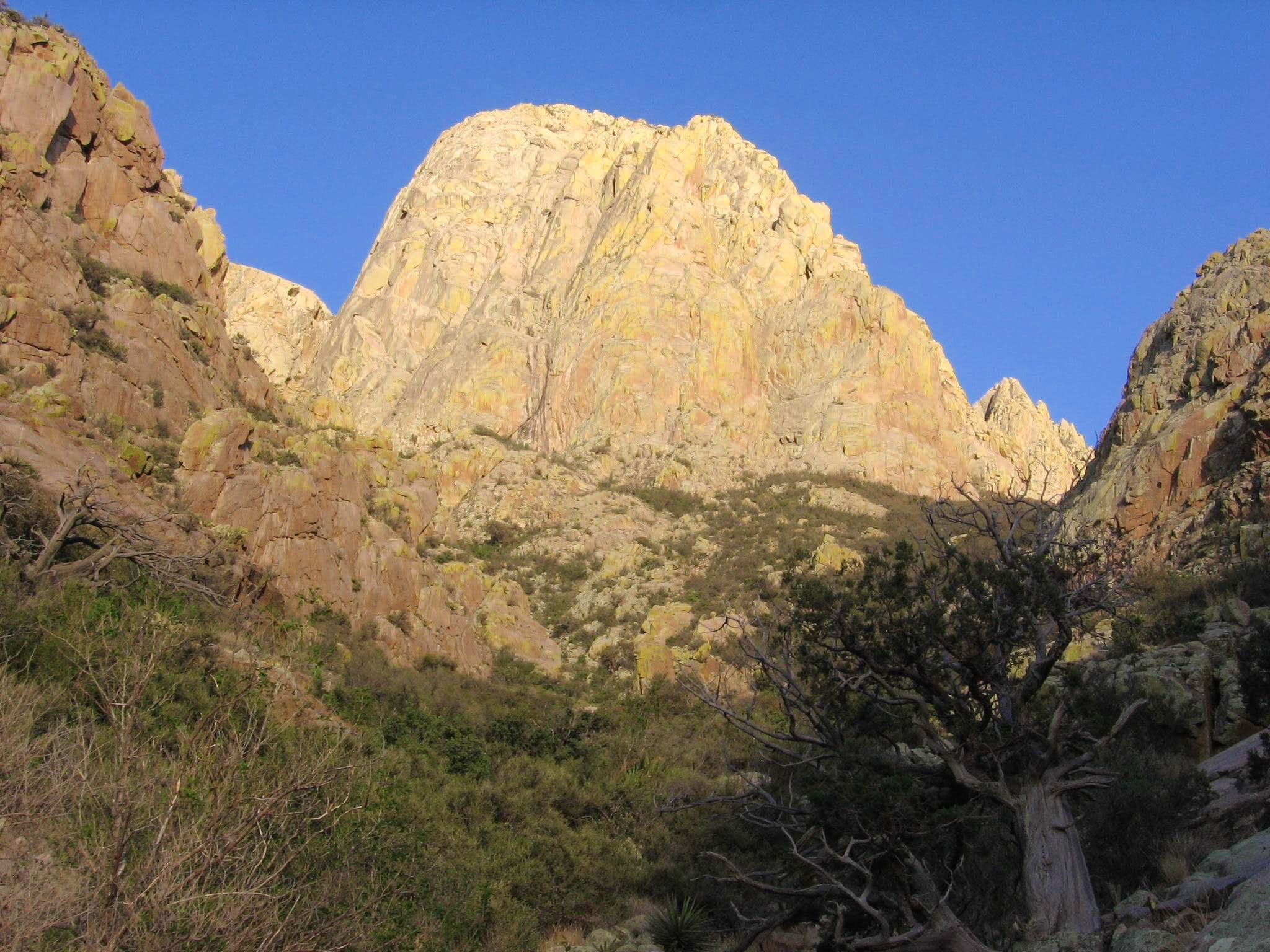 North Rabbit Ear (Organ Mtns)