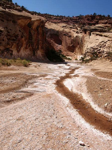 interesting tributary near the bottom of the canyon